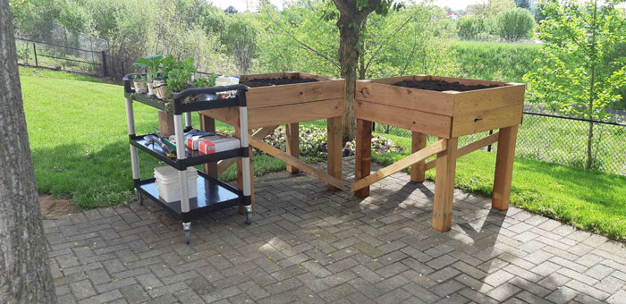 new-raised-beds-for-gardening